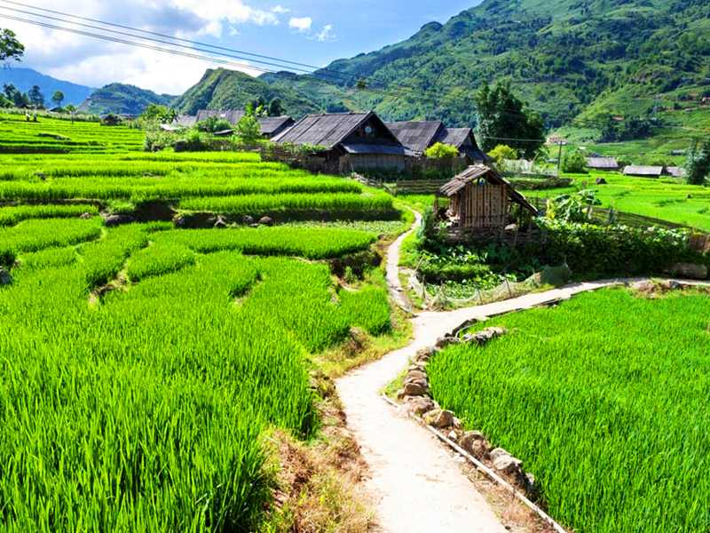 Sapa Tour 1 Day - Cat Cat Village - Cat Cat Waterfall - Sin Chai Village