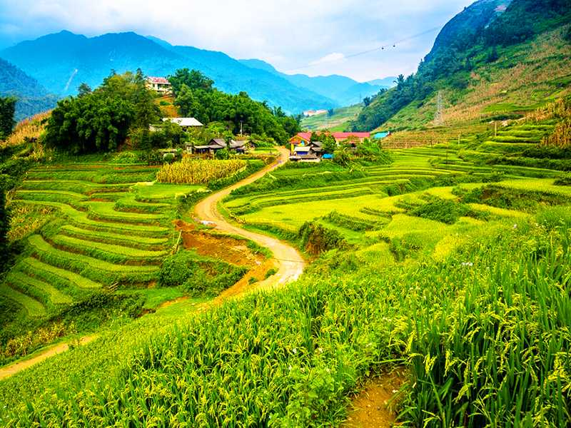 Sapa Tour By Bus 2 Days 1 Night 3-Star Hotel in Sapa (Option 1)